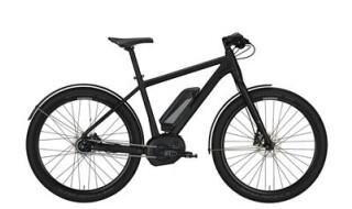 Conway EMR Urban von Lamberty, Fahrräder und mehr, 25554 Wilster