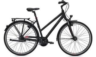 Falter C 6.0 von Das Fahrrad, 30853 Langenhagen