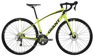 GIANT Anyroad 1 LTD 2017 von Fahrrad & Meer, 25335 Elmshorn