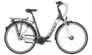 GIANT Tourer von SANDAU Bike + Sport, 29633 Munster