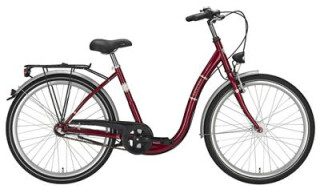 Excelsior Pagoba von Mattheß` Bike Shop, 06901 Kemberg