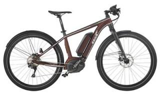 EBIKE.Das Original Pure P004 Pacesetter von Der Fahrradladen Janknecht eK, 49716 Meppen