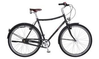 VSF Fahrradmanufaktur E1NS von Fahrradhof VSF GmbH, 34131 Kassel