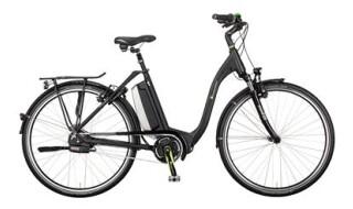 e-bike manufaktur 5NF von Fahrrad Wollesen, 25927 Aventoft