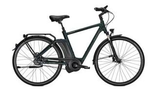 Raleigh Newgate Premium von Fahrrad Look, 48161 Münster