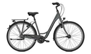 Raleigh Devon HS, Damen Citybike, 8-Gang Nabenschaltung mit Freilauf, 28 Zoll von Henco GmbH & Co. KG, 26655 Westerstede