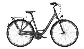 Raleigh Unicon Plus von Zweirad Brüstle, 75031 Eppingen