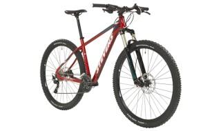 Stevens Applebee von WIECK fahrrad & zubehör, 24601 Wankendorf