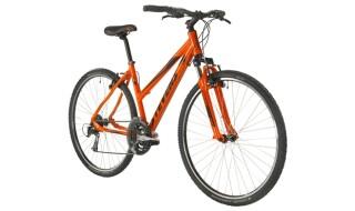 Stevens 3X G+L von Fahrrad Kißkalt, 90408 Nürnberg
