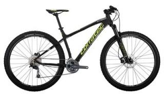 Corratec X Vert 29 Zoll von Radsport Hellweg, 26683 Saterland OT Ramsloh