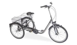 Draisin Senora von Fahrrad Wollesen, 25927 Aventoft