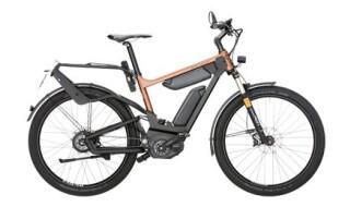 Riese und Müller Delite GT/GX 1000Wh Dual Battery von Rundum, der Fahrradladen, Matthias Ilg, 73433 Aalen - Wasseralfingen