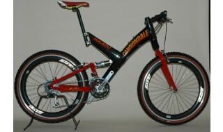 Cannondale Raven 2000 von Robins Radshop, 47551 Bedburg-Hau