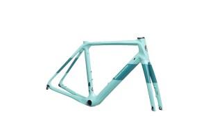 Bianchi INFINITO CV Disc Rahmenset von Rad-Sportshop Odenwaldbike, 64653 Lorsch
