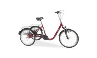 Draisin Senora von Bike Service Gruber, 83527 Haag in OB