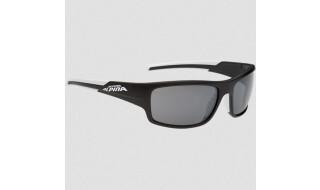 Alpina Brille Testido von Fahrrad Bruckner, 74080 Heilbronn