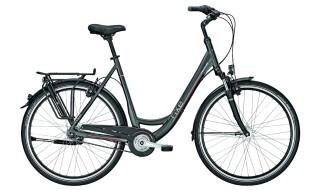 Rixe Toulouse XXL HS 7Gang Damenrad von 2-Rad Esser GmbH & Co. KG, 97941 Tauberbischofsheim