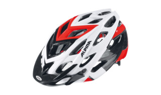 Alpina Helm D-ALTO von Fahrrad Bruckner, 74080 Heilbronn