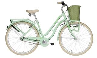 Pegasus Tourina grün Retro Fahrrad von 2-Rad Esser GmbH & Co. KG, 97941 Tauberbischofsheim