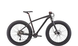 Felt DD 70 Fatbike von Bike and Barbecue, 38315 Hornburg