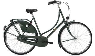 Falter H 1.0 Grün von Zweiradhaus Möllmann, 44534 Lünen