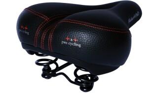 P&P pro cycling Rückenwind Rot von Bike & Co Hobbymarkt Georg Müller e.K., 26624 Südbrookmerland