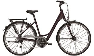 Kalkhoff Jubilee 24 von Erft Bike, 50189 Elsdorf