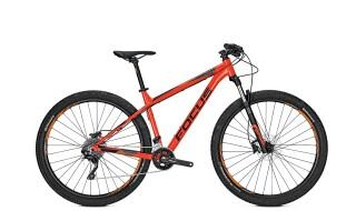 "Focus WHISTLER Lite 20-Gang MTB Rot 29"" Modell 2018 von Fun Bikes, 53175 Bonn (Friesdorf)"