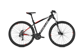 "Focus WHISTLER Core 24-Gang MTB Schwarz 29"" Modell 2018 von Fun Bikes, 53175 Bonn (Friesdorf)"
