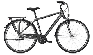 Raleigh Unico Plus - 2018 von Erft Bike, 50189 Elsdorf