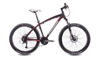 Chrisson 26 Zoll ALTERO 2.0 schwarz matt von Just Bikes, 10627 Berlin
