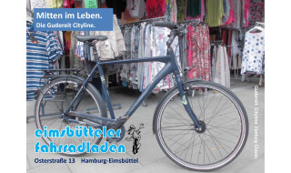 Gudereit Cityline Fantasy Classic Diamant von Eimsbütteler Fahrradladen, 20259 Hamburg