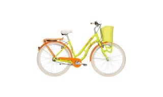 Pegasus Tourina grün-orange von Zweirad Center Legewie, 42651 Solingen
