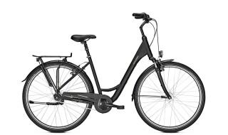 Raleigh Chester 7 - 2019 von Erft Bike, 50189 Elsdorf