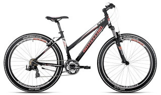 Bottecchia 103 - Shimano 21-Gang von Connys Fahrradladen, 23769 Fehmarn OT Burg
