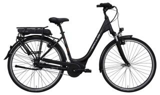 Hercules Robert R7 von Connys Fahrradladen, 23769 Fehmarn OT Burg