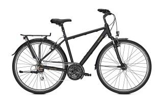Raleigh Chester 21 - 2019 von Erft Bike, 50189 Elsdorf