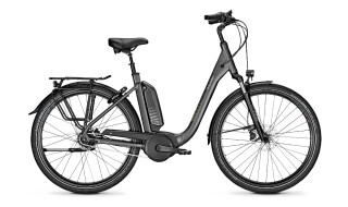 Raleigh Kingston 8 XXL - 2020 von Erft Bike, 50189 Elsdorf