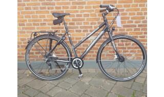 Falter U 8.0 von WIECK fahrrad & zubehör, 24601 Wankendorf