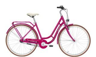 Pegasus Bici Italia purple von Zweirad Center Legewie, 42651 Solingen