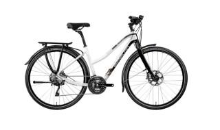 Simplon Silkcarbon Trekking Damen von Fahrrad Mertens, 63785 Obernburg