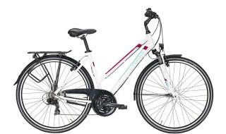 Pegasus Piazza 21 von Zweiradfachgeschäft Hochrath, 46399 Bocholt - Holtwick