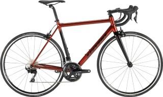 Stevens Stelvio 2021 von Radsport Laurenz GmbH, 48432 Rheine
