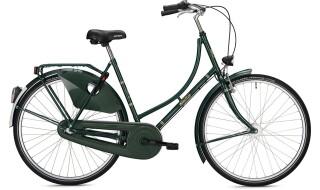 FALTER H 1.0 Classic, Tannengrün von Bike & Co Hobbymarkt Georg Müller e.K., 26624 Südbrookmerland