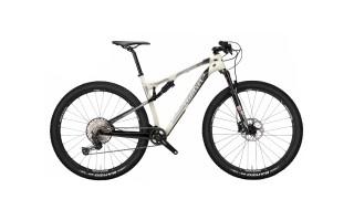 Wilier 110 FX von Rad-Sportshop Odenwaldbike, 64653 Lorsch