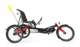Hase Bikes Trigo Nexus von FAHRRADIES Fahrradfachgeschäft GmbH, 06108 Halle Saale