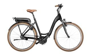 Riese und Müller Swing vario von fahrradfuchs ebike erlebniswelt, 64521 Groß-Gerau