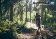 Morrison - Katalog 2019